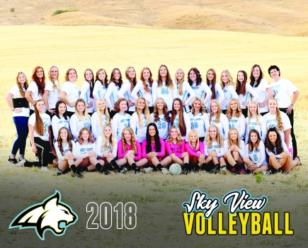 Volleyball2018-8x10inches (1)